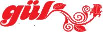 Esenler halı yıkama logo